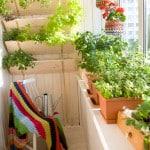 Зелеь на балконе в качестве украшения