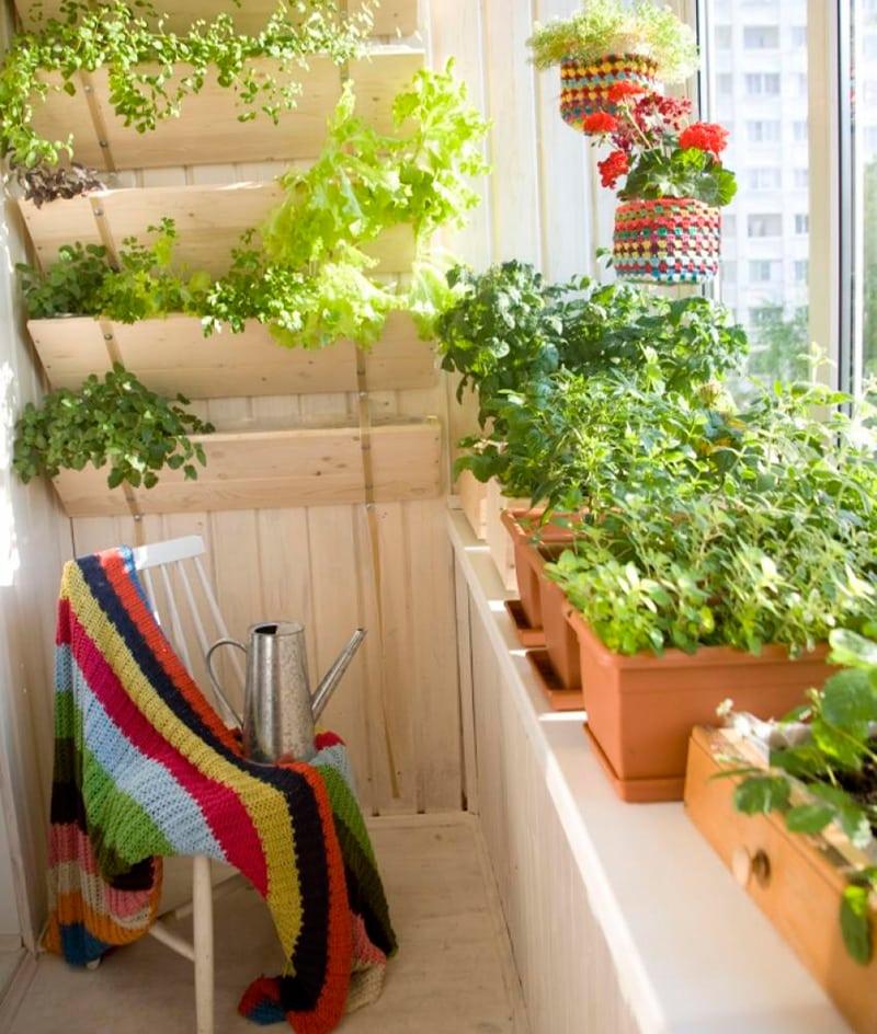 Выращивание на балконе зимой. - дизайнерские решения - катал.