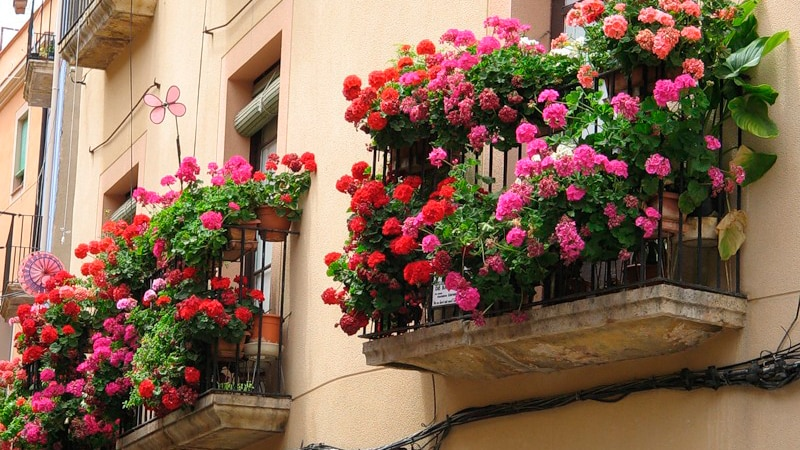 Как оформить открытый балкон