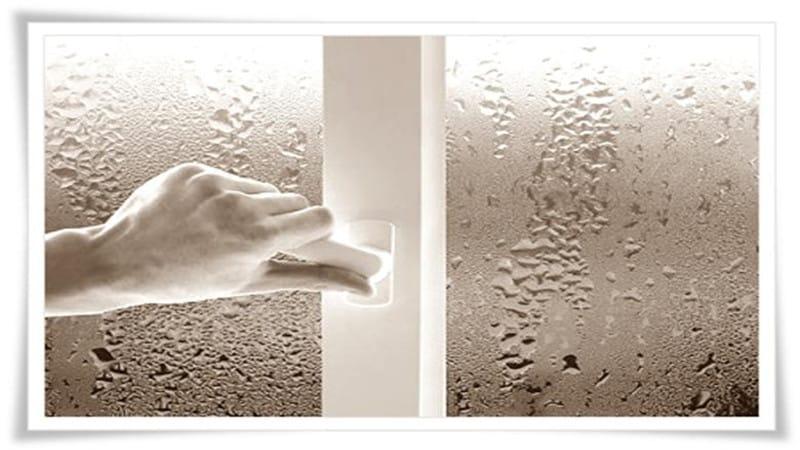 Причины появления плесени на окнах